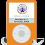Insight Into Integral Yoga